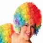 Afro Wig Rainbow colors